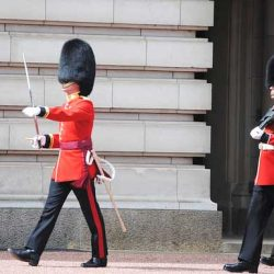 Palace guards march stiffly