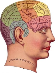 Vintage illustration of brain