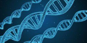 Biological intelligence